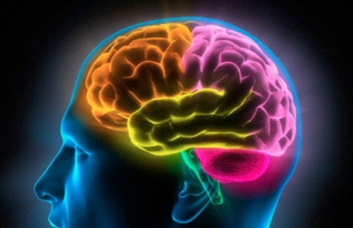 2F8E00B800000578-3369324-The_discovery_means_that_headaches_could_be_prevented_or_allevia-a-34_1450723473653