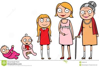 woman-life-stages-development-cartoon-illustration-different-cycle-growth-33550149