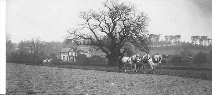 harrowing-hope-farm-1900s